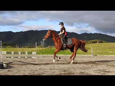 Jumping Lessons [June 2017]