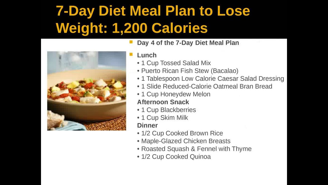program to lose weight