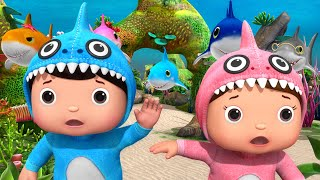 Little Baby Bum | Baby Shark Song V2 | +More Nursery Rhymes and Kids Songs | ABCs and 123s