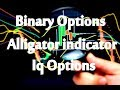 Binary Options Alligator Indicator Iq Options