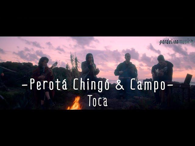 Perotá Chingó & Juan Campodónico - Toca [Live on Pardelion Music]