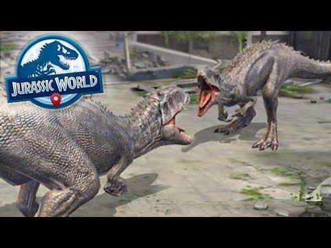 Indominus Rex VS Indominus Rex!!! - Jurassic World Alive | Ep24 ( Jurassic GO )