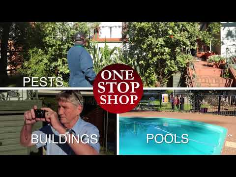 All Star Pest Control 30 Youtube