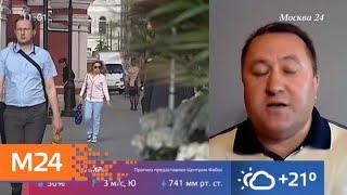 Смотреть видео Синоптики рассказали, когда в Москве прекратятся дожди - Москва 24 онлайн