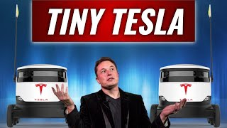 Tesla's Tiny Robotics Business