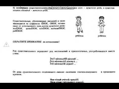 Rus Dili Qrammatikasi 4 Cu Ders Youtube