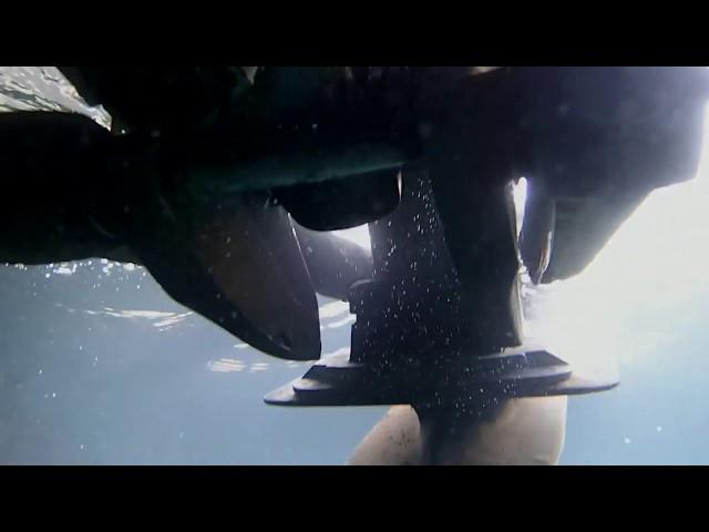 Sea Ya Later 01/05/18