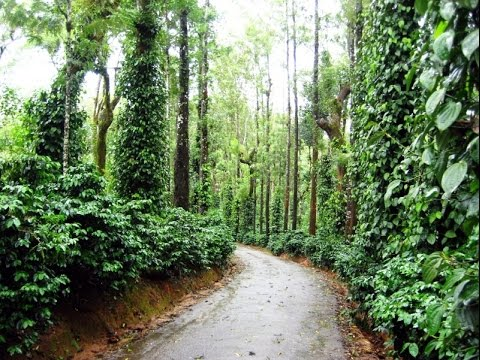 Coorg  The Scotland of India, Kodagu, Karnataka