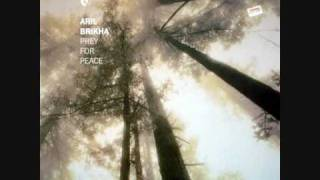 Aril Brikha - Prey for peace