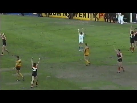1990 AFL Elimination Final - Melbourne vs Hawthorn
