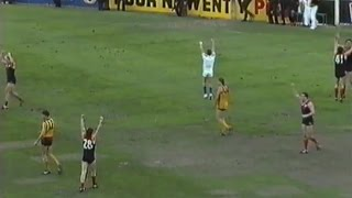 1990 AFL Elimination Final - Melbourne vs Hawthorn