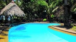 Alona Tropical Beach Resort - Bohol Hotels - WOW Philippines Travel Agency