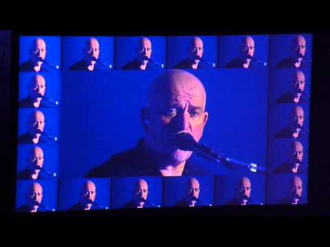 Peter Gabriel - This is the picture (Live Milano 2013)