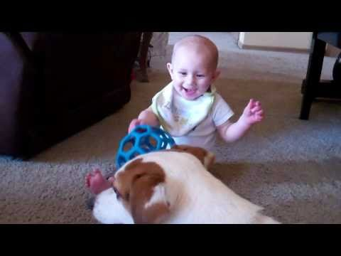 Baby With Jack Russell Terrier  ( Wyatt 7 months )