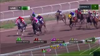 Vidéo de la course PMU QUINTA SINFONICA H.