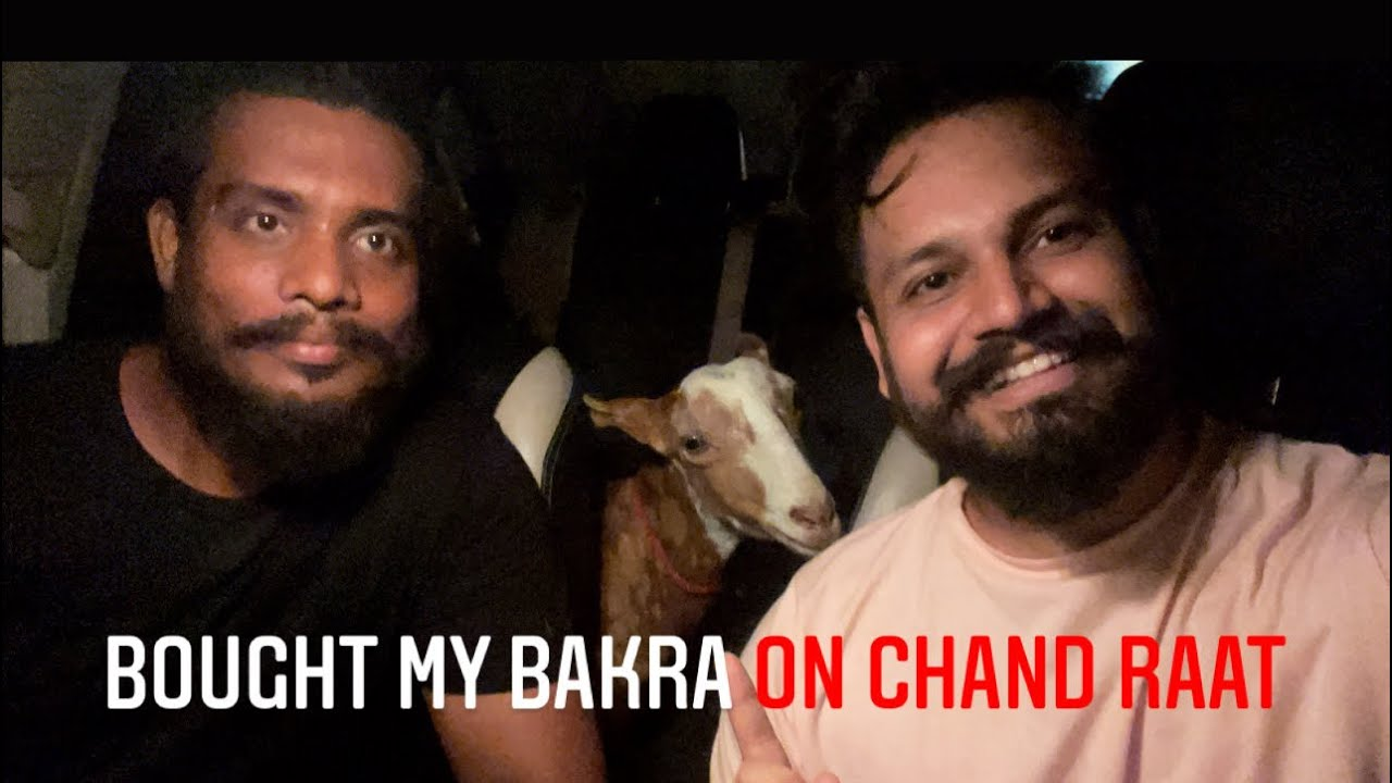 JUST BOUGHT MY BAKRA ON CHAND RAAT
