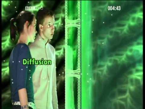 GCSE Science Revision - Cells