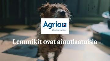 Lemmikit ovat ainutlaatuisia | Agria Eläinvakuutus