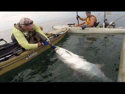 Kayak Fishing : THAT IS A HUGE FISH !! Pensacola, Florida