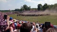 Dülmener Wildpferdefang 2018 - Einlauf der Pferde (26/05/2018)