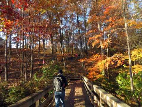 Victoria Bryant State Park Trails 11 22 16