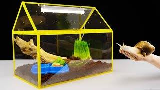 DIY Unusual Home for a Giant Snail In this video I show you how to ...