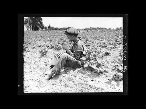 Photographs during the Great Depression by Dorothea Lange
