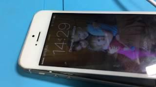 iPhone 5s hech flash, hech imei. ta'mirlash Kostroma