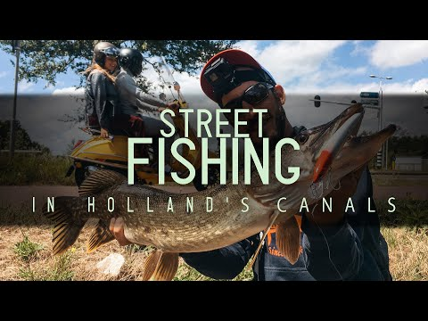 STREET FISHING In The Holland's Canals