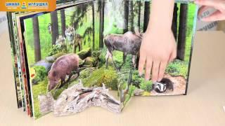 Жива книга лісу, книжка-панорама (Азбукварик)