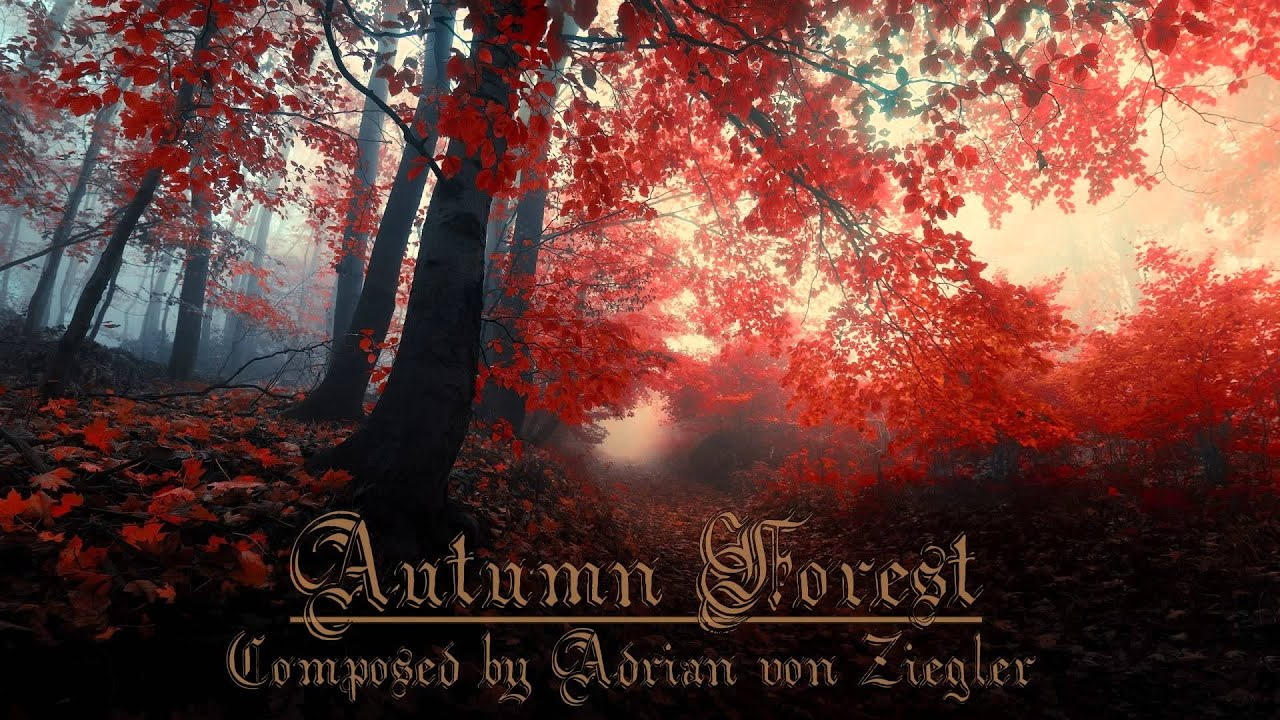 Fall Heart Leaves Background Wallpaper Relaxing Celtic Music Autumn Forest Youtube