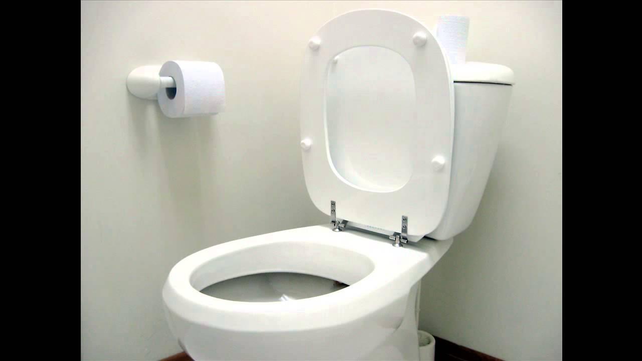 Soñar con el toilet/retrete - Significado de soñar con el ...