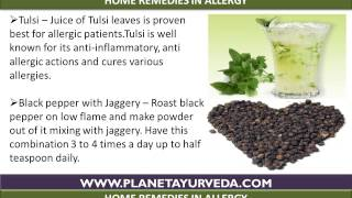 Herbal remedies for allergy with ayurvedic treatment