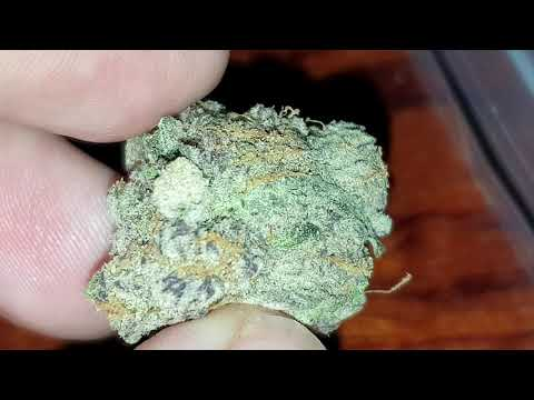 Purple Punch From Green Place Coffeeshop , Amsterdam 2019