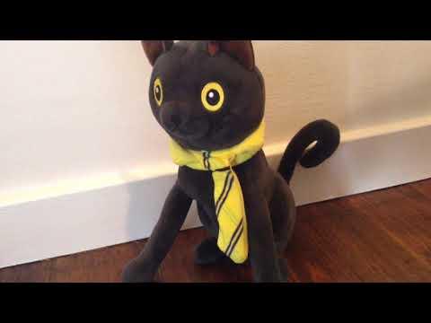 MORE GOD DAMN CATS - Singing Popcorn