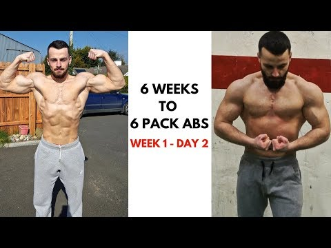 6 Pack Abs Workout At Home | 6 Weeks To 6 Pack Abs (Day 2)