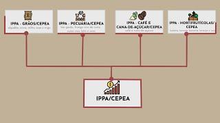 Entenda o que é o IPPA/Cepea