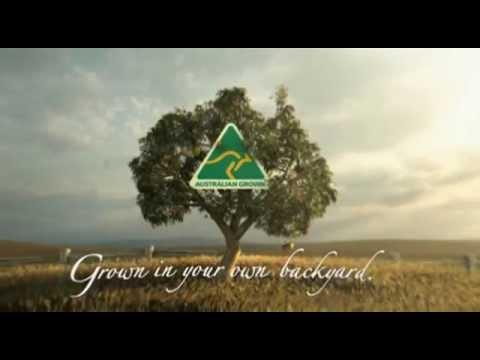 About the Australian Made, Australian Grown logo