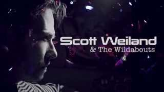 SCOTT WEILAND & The Wildabouts   Live   Nanaimo, B C  by Gene Greenwood