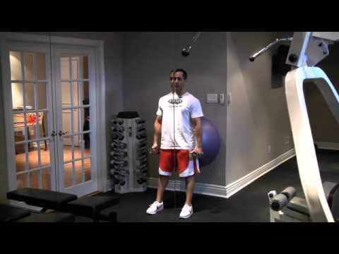 Stability Ball Dumbbell Squats