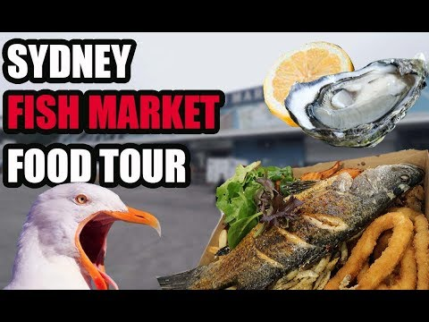 Is The SYDNEY FISH MARKET WORTH A VISIT? - Food Tour + Must Do's & Don'ts |  Australia 2019