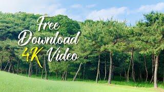 무료영상소스, free stock video sourc…