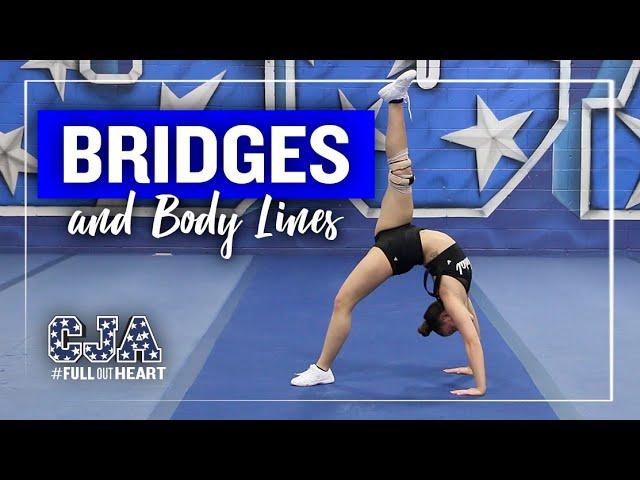 Bridges & Body Lines