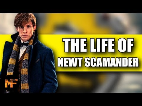 The Life Of Newt Scamander: Why He's The Perfect Hero For HIS Franchise (Harry Potter Video Essay)