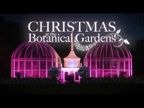 Christmas At The Botanical Gardens
