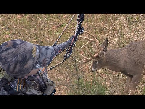 One and Done!  Big Buck On the First Sit | Bowhunt or Die Season 10 Episode 43