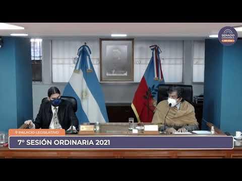 EN VIVO: Septima Sesión Ordinaria 2021