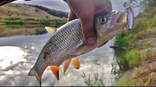 Рыбалка на р.Хопёр