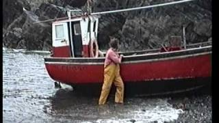 cadgwith in cornwall june 1990