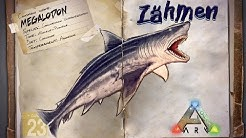 ARK‬: Survival Evolved [GUIDE/Deutsch] ** Megalodon - Hai zähmen **